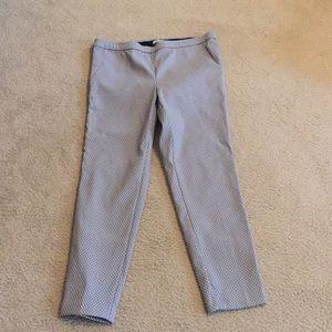 Dalia gray polka dot pull on pants. Size 14